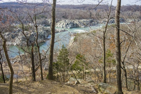 Scenic view at Great Falls